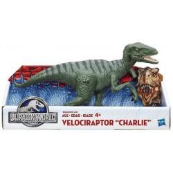 "Stor ""Charlie"" Velociraptor"