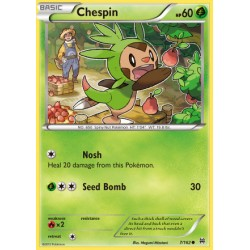 Chespin (common)