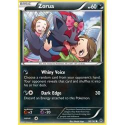 Zorua (common)