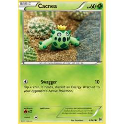 Cacnea (common)