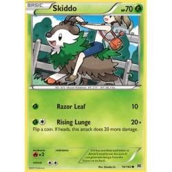 Skiddo (common)