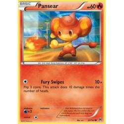 Pansear (common)