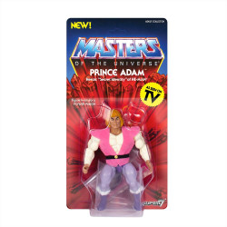 Prince Adam Masters of the...